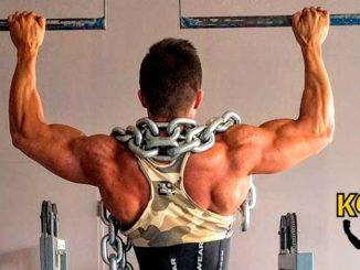 Espalda Como entrenar los músculos de la espalda