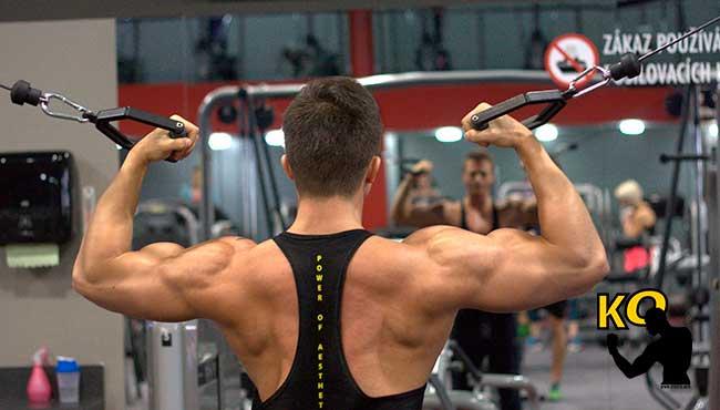Que hace crecer los músculos.