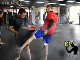 MMA-para-principiantes