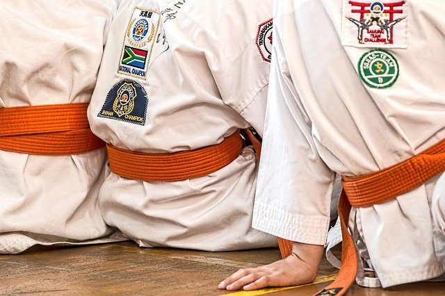 Reglamento de karate
